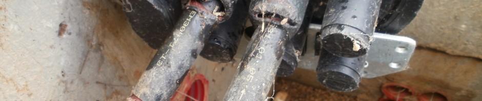 devoradas 940x198 - Cables y roedores